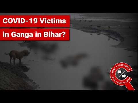 FACT CHECK: Does Image Show COVID-19 Victims' Corpses Floating in Ganga in Buxar, Bihar?
